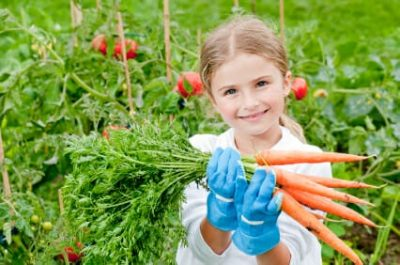 Alimenti a km zero: ecosostenibili, economici, equilibrati