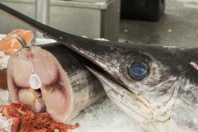 Pesce…e inquinanti: pro e contro, verità contrastanti