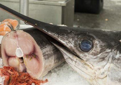 30953844 - swordfish