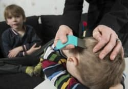 38269399 - mother checking childs head for lice with a comb