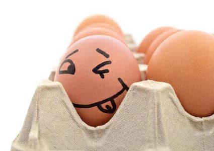 Le uova, cibo per la mente