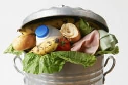 49370756 - fresh food in garbage can to illustrate waste